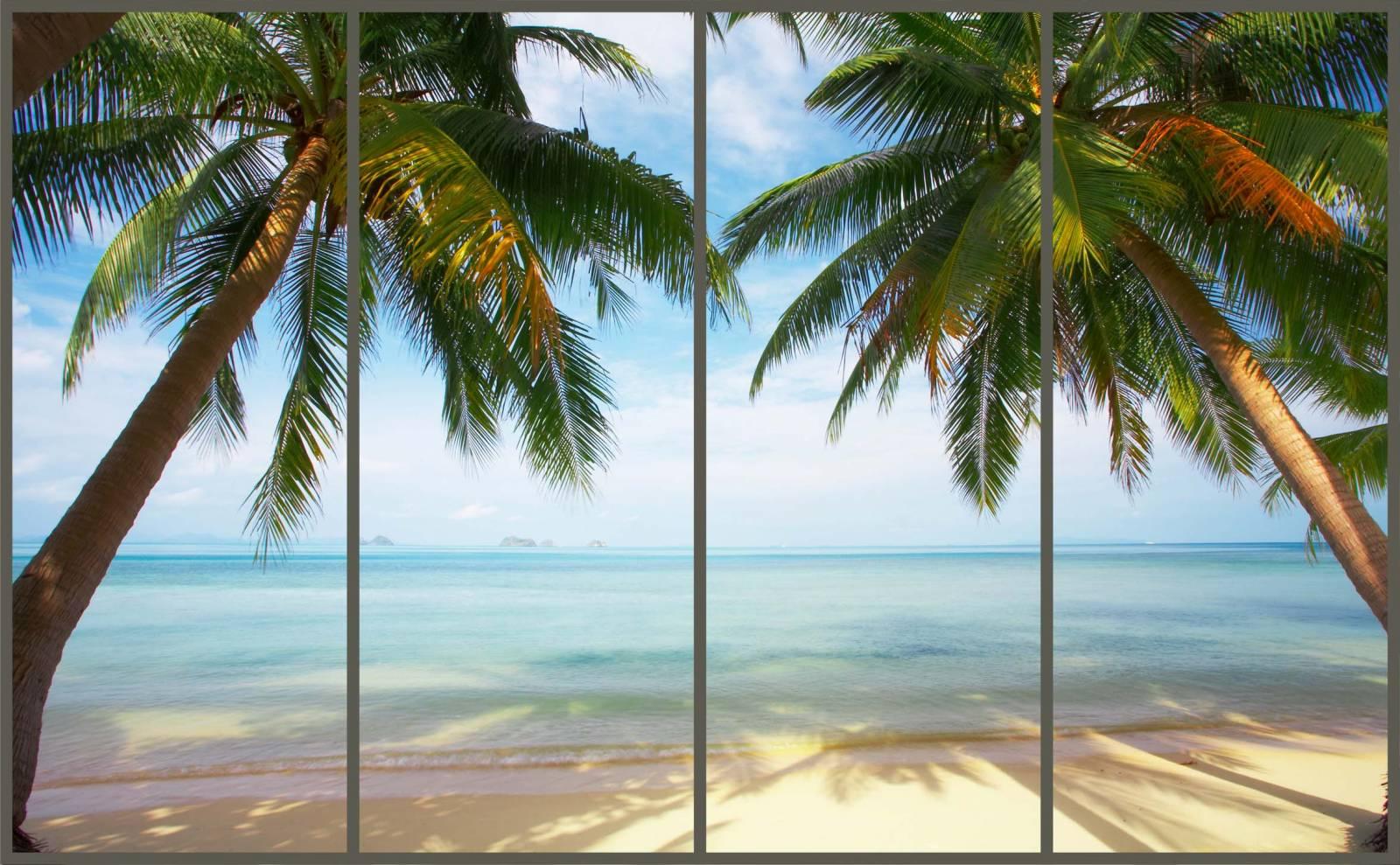Фото шкафы купе с пальмой стекло 6